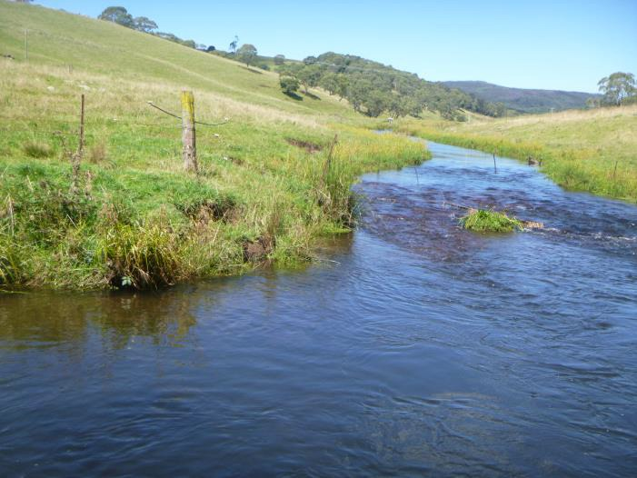 Coutts water at Ebor NSW